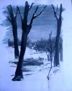 Caillard - Paysage ! dans illustration caillard-paysage-239x300