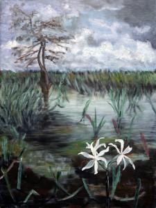 Les Everglades Sept 1996