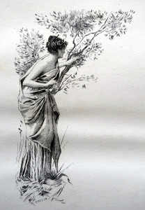 chloé guette daphnis