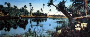 4004 - L'Afrique du Nord par R. Prouho. Aux bords de l'Oued. COMBIER IMP. MACON