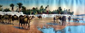 Lévy et Neurdein - 26 Scènes et Types Chameaux dans l'Oued - LL