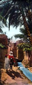 Scènes et Types d'Afrique du Nord. Paysage du Sud. Au bord de l'Oued