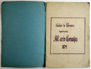 format cahier 24 feuilles + couverture - manuscrit (29 x 19.5)