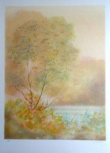 Lithographie papier Arches - Paysage étang - EA - Format 65x49 sur 75.5x54.5