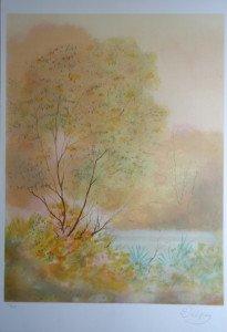 Lithographie papier Arches - Paysage étang - N° 213 sur 225 - format 65x49 sur 75.5x51.5