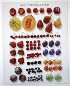 Offset NouvellesImages 1997 - format 50 x 40