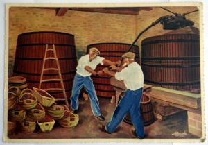 N° 14 Volnay scène de pressoir dans une cuverie