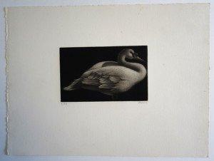 gravure n°8 sur 23 ex signée Runard format 25x33 bassin 9x14