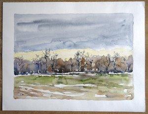 2008 aquarelle signée A.P - sans titre datée dos 16 12 2008  - Format 50x65