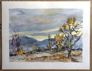 2009 aquarelle signée A.P sans titre datée dos 1 1 2009 - format 50x65