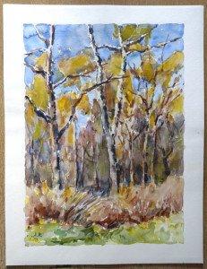 2010 aquarelle signée A.P. Titre Bois de la nidification d'après aquarelle du 6 4 2010 - Format 65x50