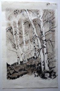 Fusain sous bois - format 50x33