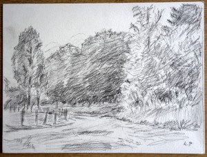 27 2011 dessin crayon signé A.P. daté titré dos 12 07 2011 Col de Champ Juin (les Charmes) format 24x32