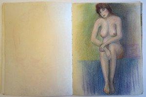 13 carnet  dessin format 32 x  24