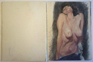 14 carnet dessin format  32 x24
