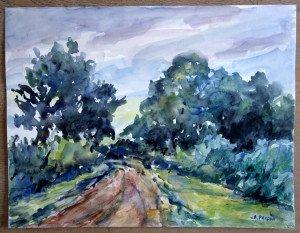 30 aquarelle signée non datée non titrée format 50x65 (cadeau fils artiste)