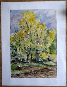 54 2007 aquarelle sans titre datée dos 17 10 2007 format  53x36