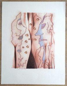 sérigraphie 2 couleurs sur Arches - 2013 format 65x50