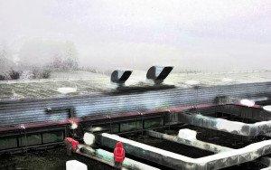 2020 ouvriers sur le toit vue de la chambre 436 copier