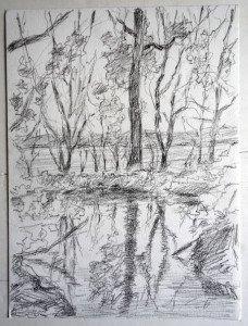 2011 dessin crayon non signé daté titré dos 18042011 La mare aux grenouilles format 32x24